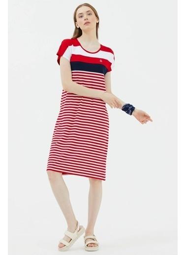 Sementa Sıfır Yaka Midi Boy Marine Elbise - Kırmızı Kırmızı